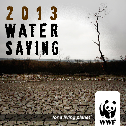 2013_watersaving