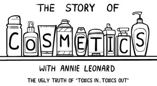 story-of-cosmetics