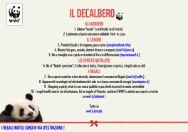 decalbero_WWF_2013