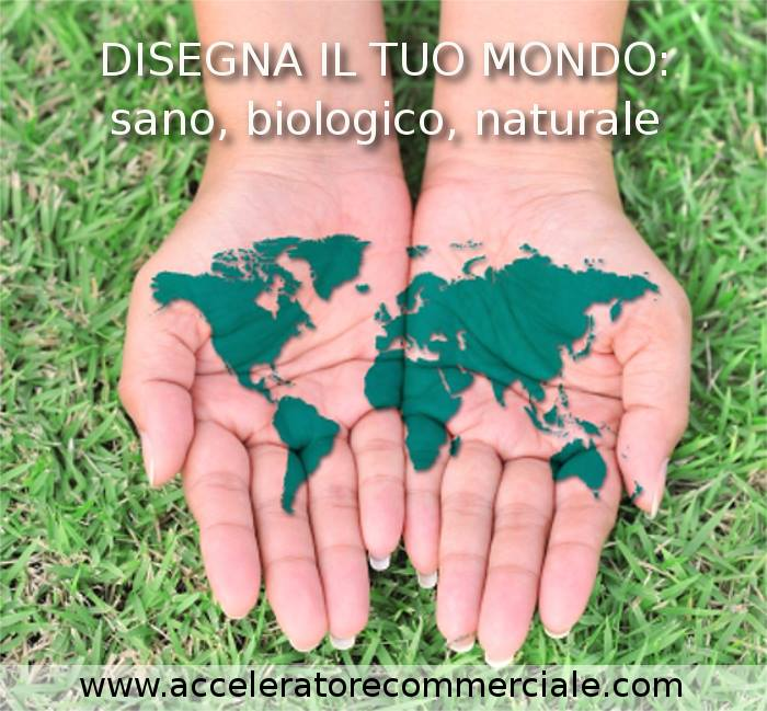 accelertore commerciale